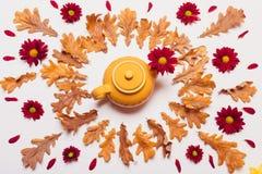 黄色水壶的构成,烘干叶子和红色花与pe 免版税图库摄影