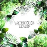 绿色水彩八仙花属设计 免版税库存照片