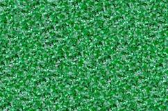绿色黄杨属篱芭 库存照片