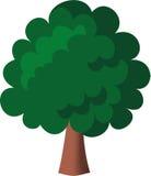 绿色结构树 免版税库存照片