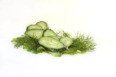 绿色黄瓜切片salat 库存照片