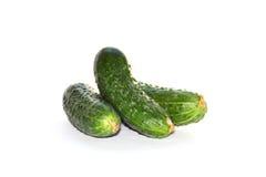 绿色黄瓜2 库存照片