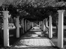 黑色&白色 免版税库存图片