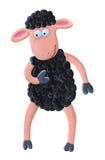 黑色滑稽的绵羊 库存照片