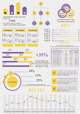 黄色紫罗兰信息 库存照片