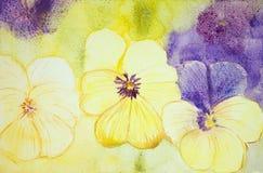 紫色紫罗兰黄色 库存照片