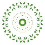 绿色黄色留下devil& x27藤; s常春藤或金黄pothos与万花筒作用 库存图片