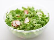 绿色莴苣沙拉 免版税库存图片