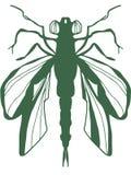 绿色蜻蜓剪影 免版税库存照片