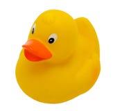 黄色浴鸭子 免版税库存照片