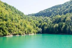 绿色水Zlatar湖在塞尔维亚 图库摄影