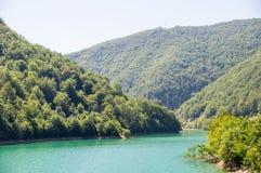 绿色水Zlatar湖,塞尔维亚 库存照片