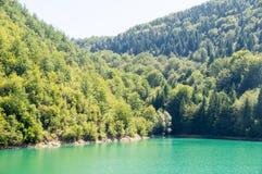 绿色水Zlatar湖,塞尔维亚 免版税库存照片