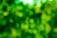 绿色bokeh背景 绿色Bokeh 绿色bokeh摘要, defoc 免版税图库摄影