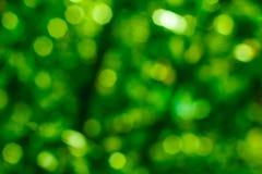 绿色bokeh背景 绿色Bokeh 绿色bokeh摘要, defoc 免版税库存照片
