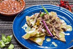 绿色Chilaquiles用肉 免版税库存图片