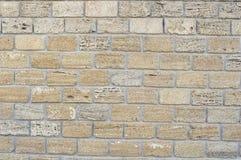 黄色coquina墙壁  免版税库存图片