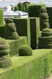 绿色cypres修剪的花园在厄瓜多尔 免版税图库摄影