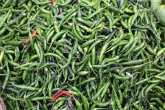 绿色paprica 免版税库存照片