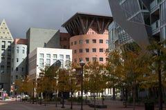 艺术中心在丹佛,科罗拉多 免版税库存照片
