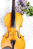 艺术中提琴 免版税图库摄影