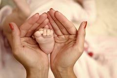 艺术儿童的系列父亲地球例证母亲向量 婴孩脚在女性手上 母亲节概念 家庭爱和信任微小的小的脚 童年和 免版税库存图片