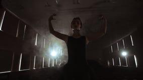 艺术和娱乐在有女性经典舞蹈家的剧院芭蕾舞短裙的,在幕后站立和看摊位 股票录像