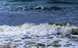 艺术品设计自然海运纹理通知 免版税图库摄影