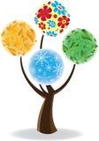 艺术四个季节结构树 免版税库存照片