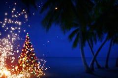 艺术圣诞节在夏威夷 库存图片