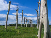 艺术在俄罗斯的卡卢加州地区的科列夫Lenivets村庄反对 库存图片