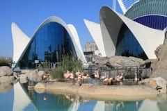 艺术城市科学视图 库存图片