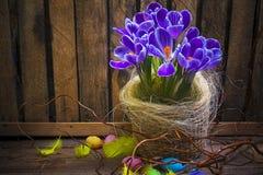 艺术复活节彩蛋篮子木看板卡番红花春天花羽毛 免版税库存照片