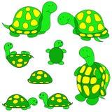 艺术夹子乌龟 库存照片
