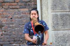 艺术家在街道执行 免版税库存照片