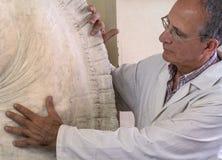艺术家姿态用在一个雕塑的手在艺术演播室 免版税库存图片