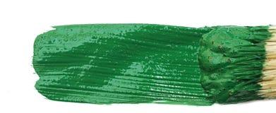 艺术家画笔绿色油漆临时 免版税库存照片