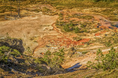 艺术家Paintpots在黄石国家公园 免版税图库摄影