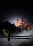艺术寿司 库存照片