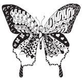 艺术性地手拉, zentangle传统化了蝴蝶传染媒介, il 库存图片