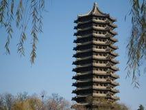 艺术性的中国自定义样式 免版税库存照片