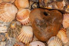 艺术性的五颜六色的女巫石头和壳在海滩 库存图片
