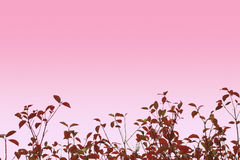 艺术性的叶子秋季背景 库存图片