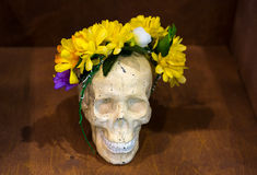 艺术性的大气:花瓶用色的水,创造性的心情,在花的头骨缠绕 免版税图库摄影