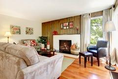 艺术性的美丽的客厅 库存图片
