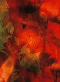 艺术性的胚胎 图库摄影