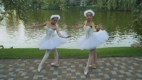 艺术性的芭蕾舞女演员在池塘附近跳舞在公园 影视素材