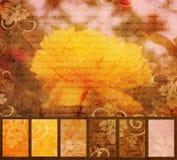 艺术性的花grunge黄色 免版税库存照片