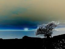 艺术性的蠕动的夜景 图库摄影