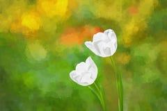 艺术性的郁金香绘画 免版税库存照片